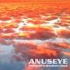 Anuseye